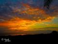 Sarasota Sky